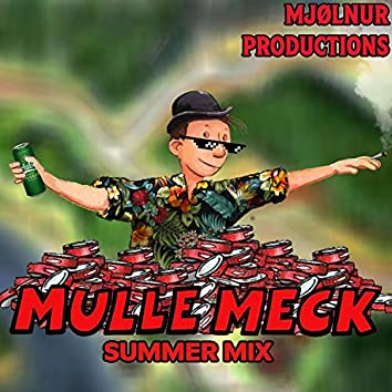 Mulle Meck Summer Mix
