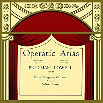 Operatic Arias by Brychan Powell