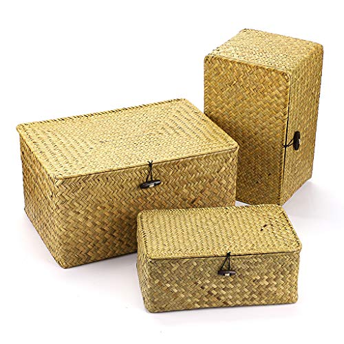 Sumnacon Set of 3 Woven Wicker Storage Bins with Lid Seagrass Basket for Shelf Organizer (Extra Large, natural color)