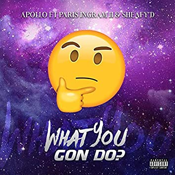 What You Gone Do (feat. Paris Ingram II & Sheafy D)