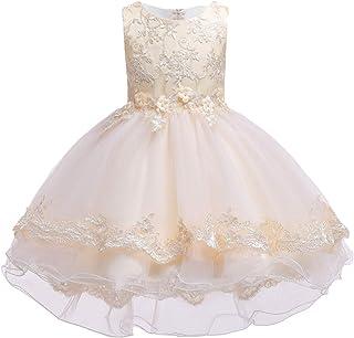 LvRao Girls Princess Dress Bowknot Party Dress Flower Tulle Skirt Wedding Bridesmaid Ball Gown