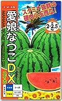 スイカ 種子 愛娘なつこDX 8粒