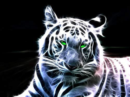 Lsping giochi Bimbo maschio 500 pezzi Animales Grandes felinos Dibujados 52x38cm