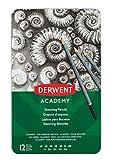 DERWENT 2301946 - Caja metálica 12 lápices grafito - graduación 5H-6B