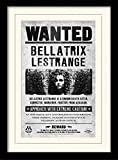 Harry Potter 1art1 Bellatrix Lestrange, Gesucht Gerahmtes