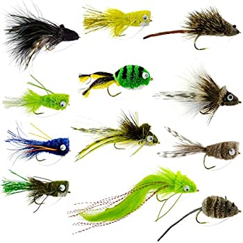 The Fly Fishing Place Bass Bug Collection - Set of 12 Bass Fly Fishing Flies - Surface Poppers Divers and Subsurface - Hook Sizes 2,4 and 6