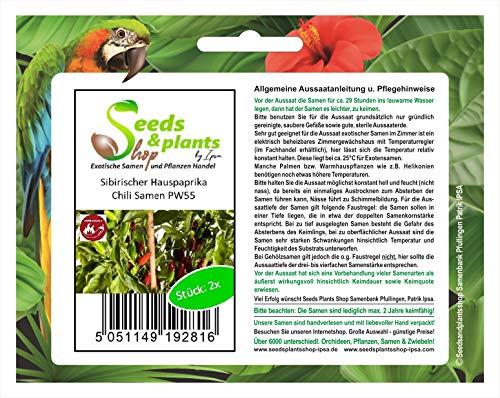Stk - 2x Sibirischer Hauspaprika Samen Saatgut Küche Garten Chili samen PW55 - Seeds Plants Shop Samenbank Pfullingen Patrik Ipsa