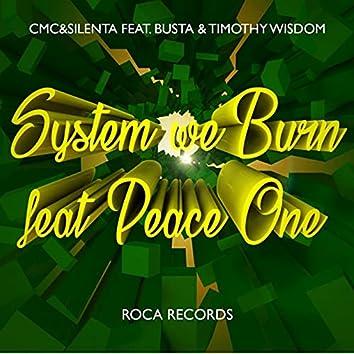 System We Burn (feat. Timothy Wisdom, Busta, Peace One)