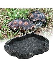 Sheens Alimentador de Reptiles, Resina de Roca Reptil Alimento y Agua Recipiente de alimentación Terrario para Mascotas Plato de Plato para Tortuga Lagarto Iguana de camaleón(S-Verde)