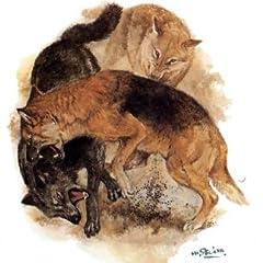 孤島の野犬 (偕成社文庫3002)