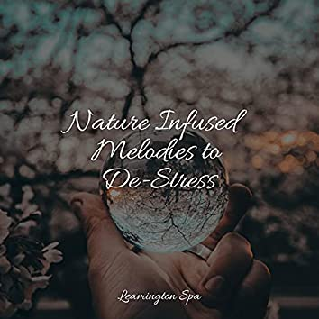 Nature Infused Melodies to De-Stress