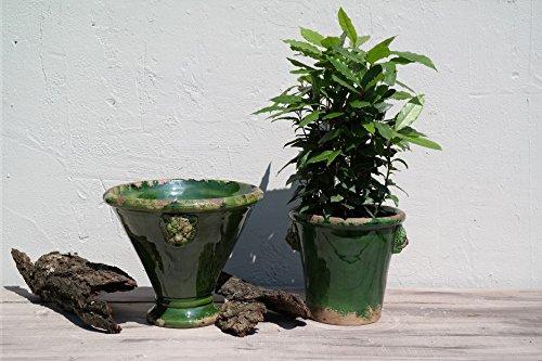 Prosperplast Alzata Leoni Pot de fleurs en céramique Vert Ø 30 cm