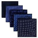 Shlax&Wing 5 Pieces Assorted Pañuelo De Bolsillo Para Hombre Handkerchiefs Set Lot (set24)