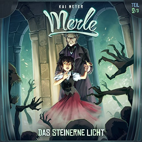 Das Steinerne Licht audiobook cover art