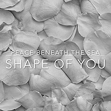 Shape of You (Piano)