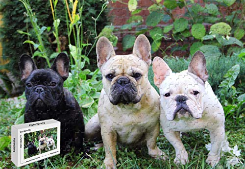 1000 Piece Jigsaw Puzzle - French Bulldogs Basswood Puzzle,29.5 X 19.6 Inch