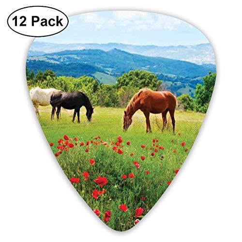 Gitaar Picks12pcs Plectrum (0.46mm-0.96mm), diverse soorten paarden eten gras in het veld met Mountain Landscape Rural Scene Print,Voor uw Gitaar of Ukulele