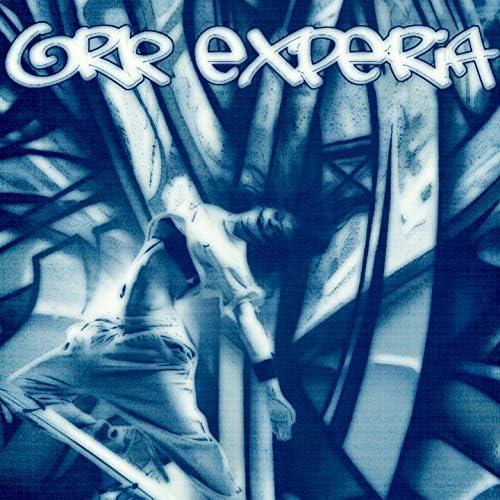 Ork Experia