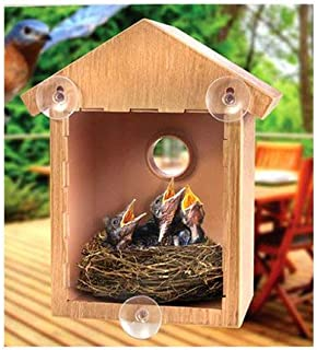 Best awesome bird houses Reviews