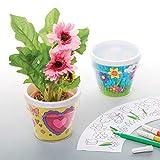 Baker Ross kits de macetas para decorar (Paquete de 2) Manualidades para niños