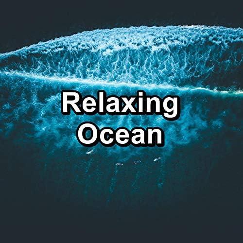 Ocean Sounds, Waterfall Sounds & Calming Waves