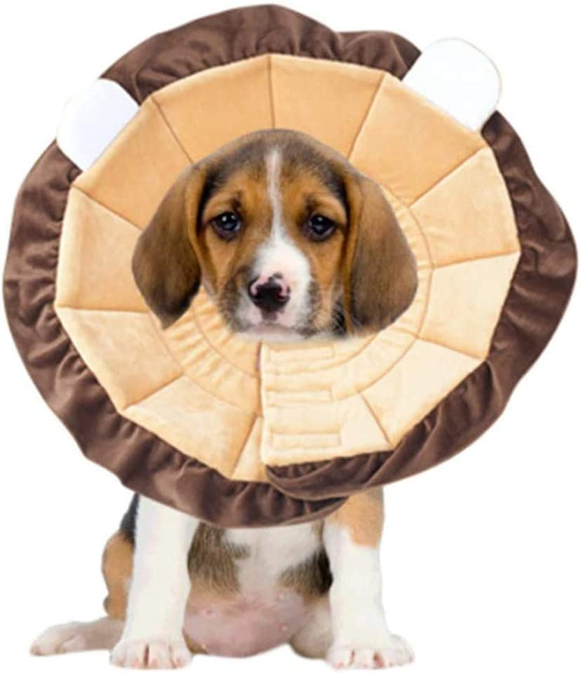 PJDDP Dogs security Recovery Collar Dog Protective Col Cone Pet Cat latest