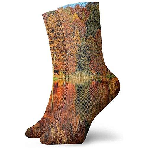 Aspen Trees Trees Autumn River Söckchen Casual Cosy Crew Socken für Männer, Frauen, Kinder