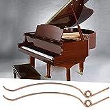WNSC Juego de resortes de Piano antioxidantes de Acero de 70 Piezas, Palanca de afinación de Piano, Resorte de Tope de Martillo de Piano Dorado Duradero, reparación para Piano Vertical
