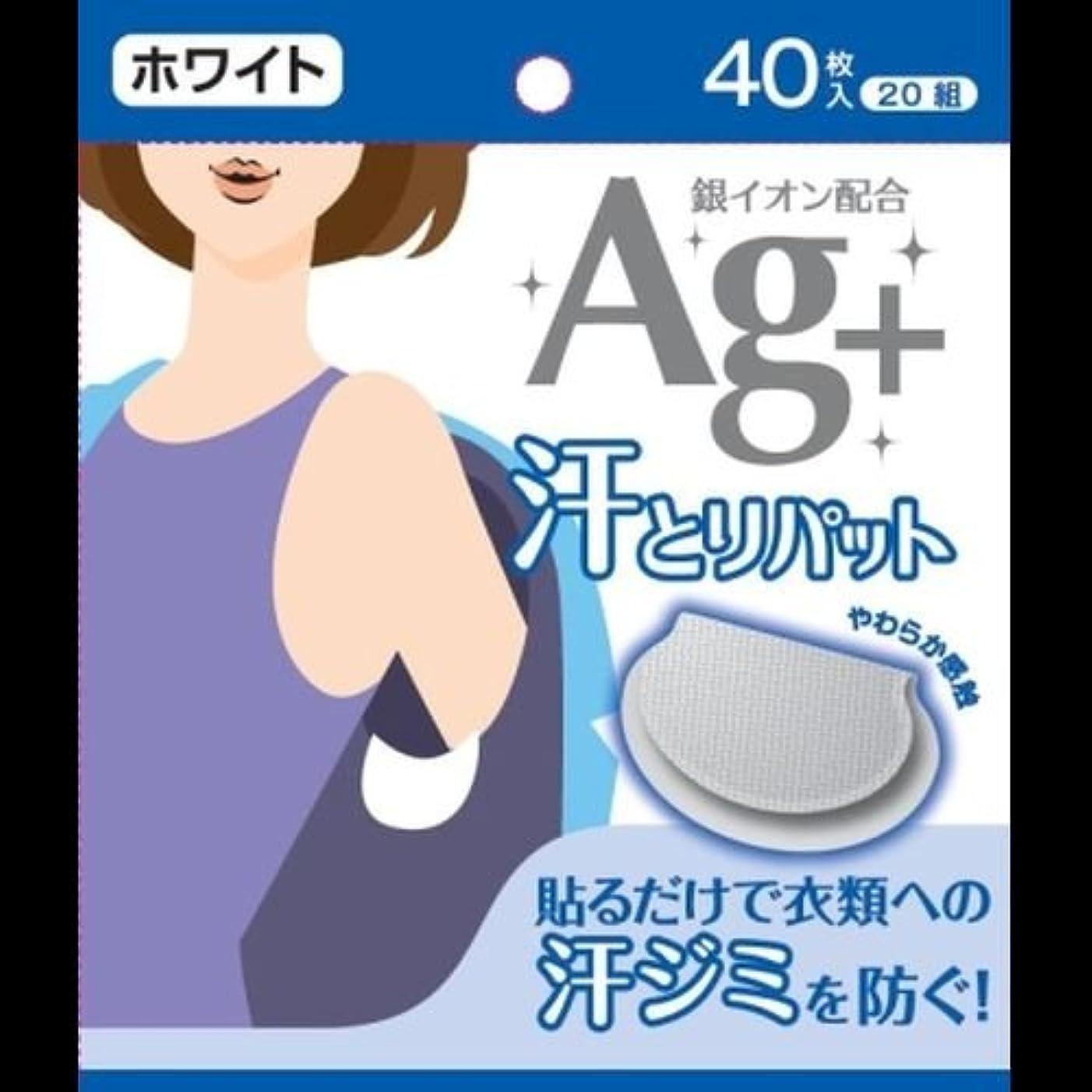 調整する石油カロリーAg+汗とりパット ホワイト 40枚入(20組) ×2セット
