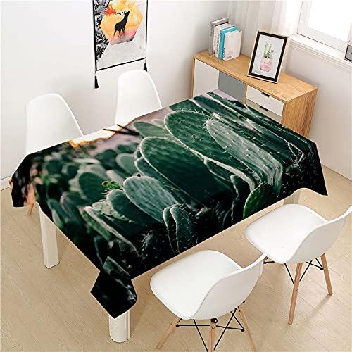 Mantel Lavable de Cactus, Mantel Impermeable Rectangular, Adecuado para Cocina, Restaurante, Picnic, Exterior, Interior M-2 140x160cm