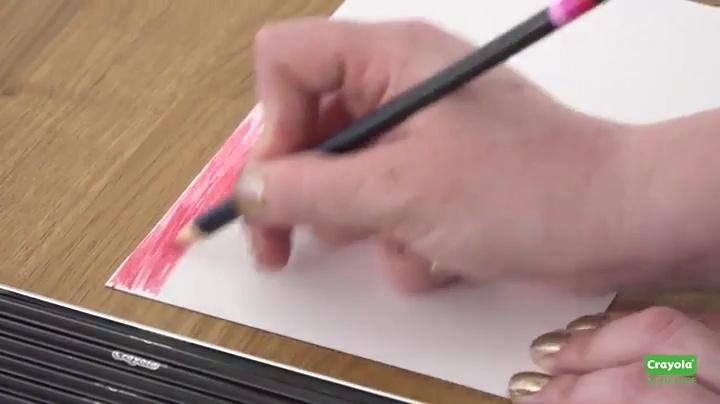 MUJI Coloring Pencil MOMA Natural Wood Made in JAPAN 12 Color From Japan