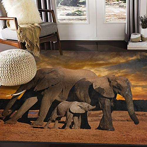 ALAZA Sunset African Elephant Area Rug Rugs for Living Room Bedroom 7 x 5 product image