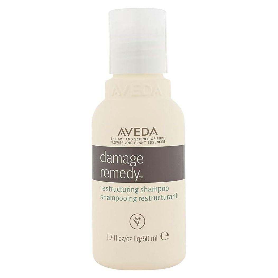 油告発者飛び込む[AVEDA] アヴェダダメージ救済再編シャンプー - Aveda Damage Remedy Restructuring Shampoo [並行輸入品]