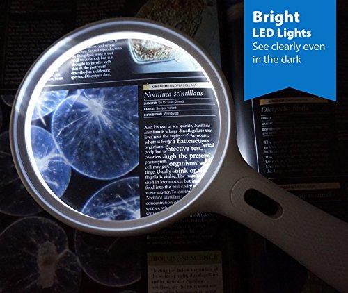 Fancii große Leselupe Lupe mit LED Licht und 2-fach 3,5-fach Vergrößerung – Grosse 138mm Beleuchtet Handlupe für Senioren zum Lesen - 6