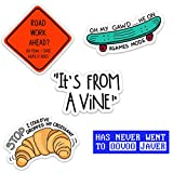 Vine Meme Waterproof Vinyl Sticker Pack for Hydro Flasks, Water Bottles, Laptops, and Phones, Made in US