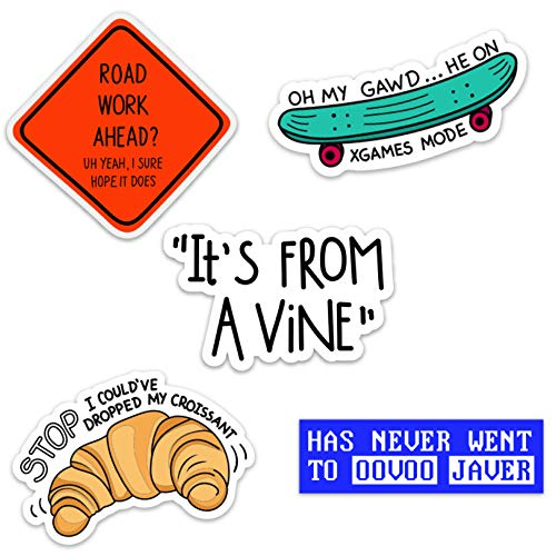 Vine Meme Waterproof Vinyl Sticker Pack for Hydro Flasks, Water Bottles, Laptops, and Phones, Made in US