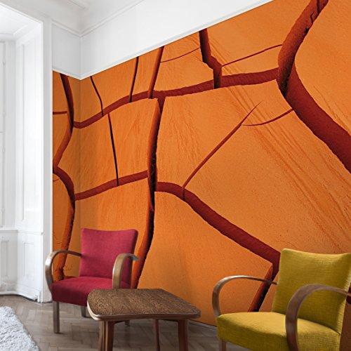 Apalis Vliestapete African Land Fototapete Breit | Vlies Tapete Wandtapete Wandbild Foto 3D Fototapete für Schlafzimmer Wohnzimmer Küche | orange, 94881