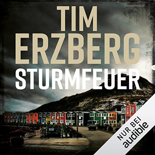Sturmfeuer (Hell-Go-Land 2) audiobook cover art