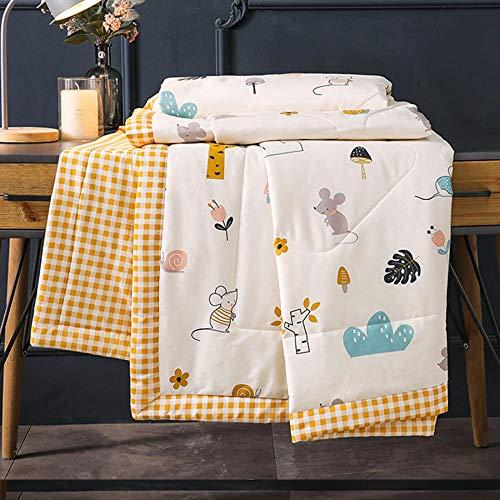 XNSY Leichte praktische Baumwolle Quilt Sommer Quilt Doppel Quilt Kinder waschbar Sommer-180x220cm_C.