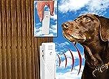 Gadget Zone UK® Ultraschall-Stopper für Hunde, funktioniert mit Allen Hunden bis zu 6 m Entfernung, tragbar und komplett kabellos, Wandmontage, sicher und menschlich