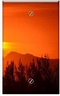 Single-Gang Blank Wall Plate Cover - Rio De Janeiro Dusk Eventide Twilight Sunset