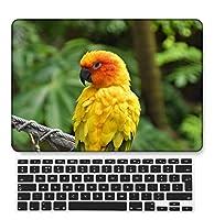 FULY-CASE プラスチック製の超スリムライトハードシェルケース対応のある古いMacBook Air 13インチUSキーボードカバー A1466/A1369 (フェザーシリーズ 0486)