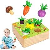 Sinwind Montessori Juguetes Niños Aprendizaje, Juegos Educativos de Granja Infantiles Ejercicio, Juguetes de Madera de 1 año de Edad, Juguetes educativos para niños