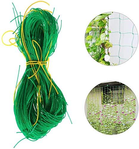 ALWWL Garden Plant Climbing Net, Support Climbing Bean Plant Nets, Plant Trellis Netting, Garden Climbing Support Net, for Flowers, Fruits, Climbing Plants, Garden