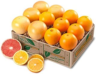 Best florida indian river grapefruit Reviews