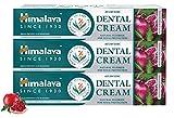 Himalaya Ayurvedic Dental Cream Herbal Toothpaste - Neem & pomegranate Gum protection...