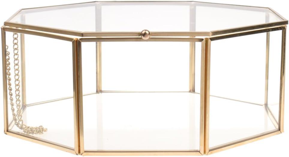 SM SunniMix Clear Glass Geometric Con Succulent Plants Terrarium Limited time trial Columbus Mall price