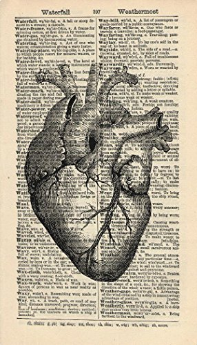 ANATOMICAL HEART ART PRINT - VINTAGE ART PRINT - Black and White Art Print...