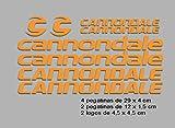 Ecoshirt NG-TO7L-5GA8 Pegatinas Cannondale F117 Vinilo Adesivi Decal...