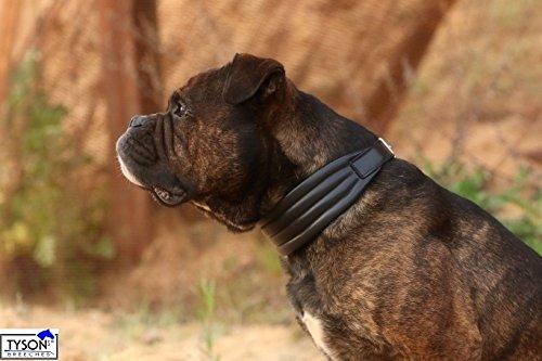 Lederhalsband Ambros EXTRA BREIT 3-5 cm ! S M L XL Halsband Leder WEICH Tysons Mehrfach bombiert (XL)